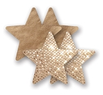 Bristols 6 Fasion Nippies- Superstar Gold Star